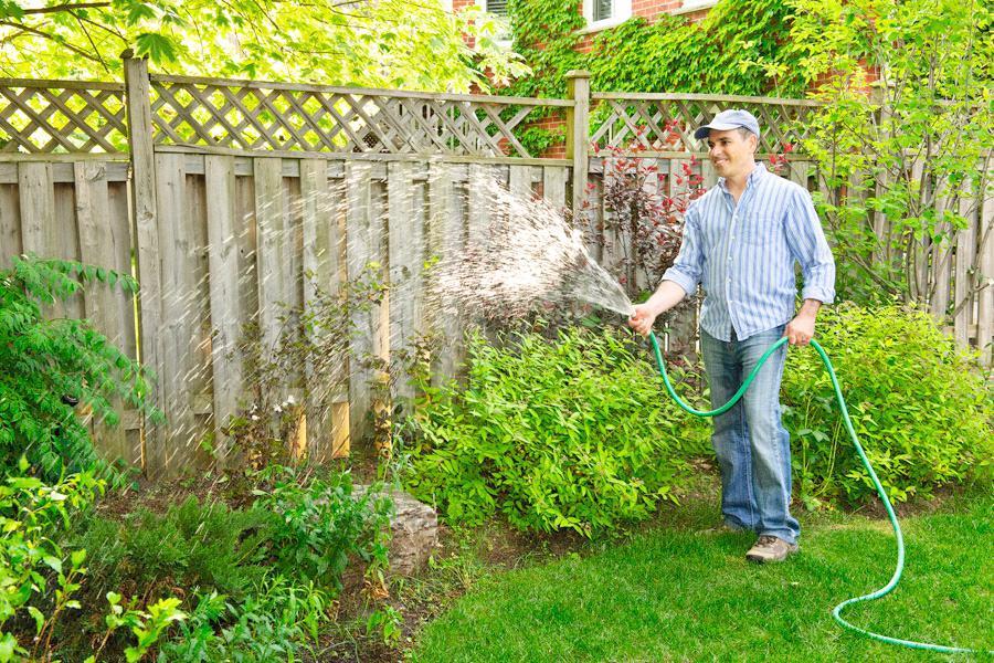 El riego clave para la salud de las plantas - Plantas que aguantan temperaturas extremas ...